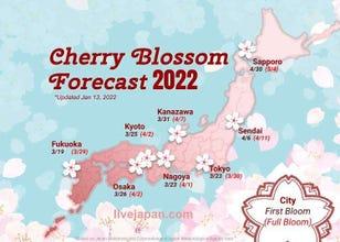 Japan Cherry Blossom 2020 Forecast: When & Where To See Sakura in Japan