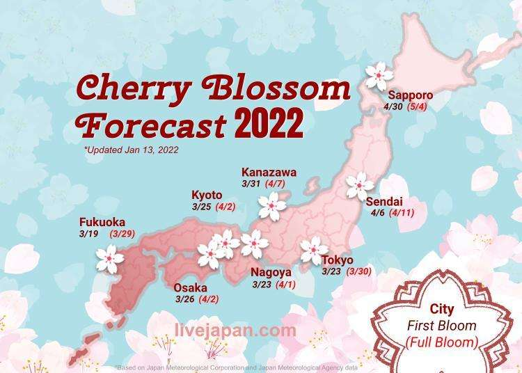Japan Cherry Blossom 2021 Forecast: When & Where To See Sakura in Japan