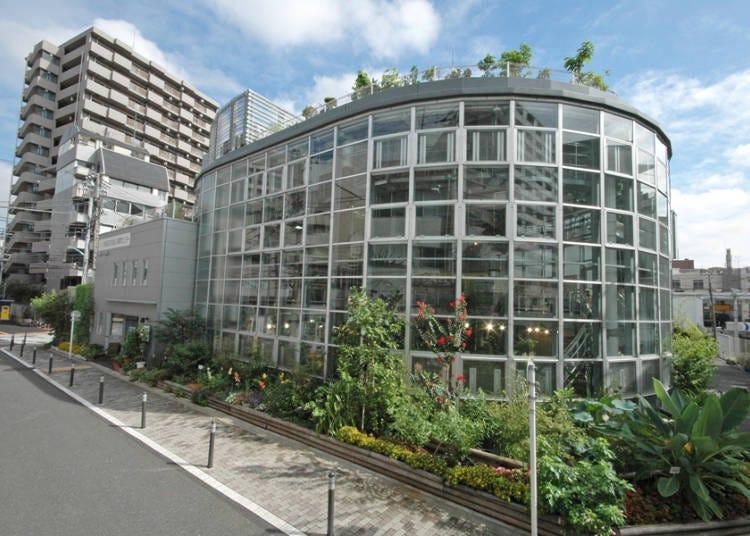 Shibuya Fureai Botanical Garden Center: Lush, Exotic Nature for a mere 100 Yen!