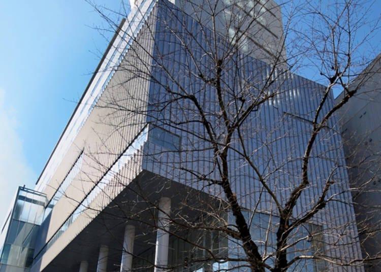 渋谷から徒歩5分で満天の星を満喫
