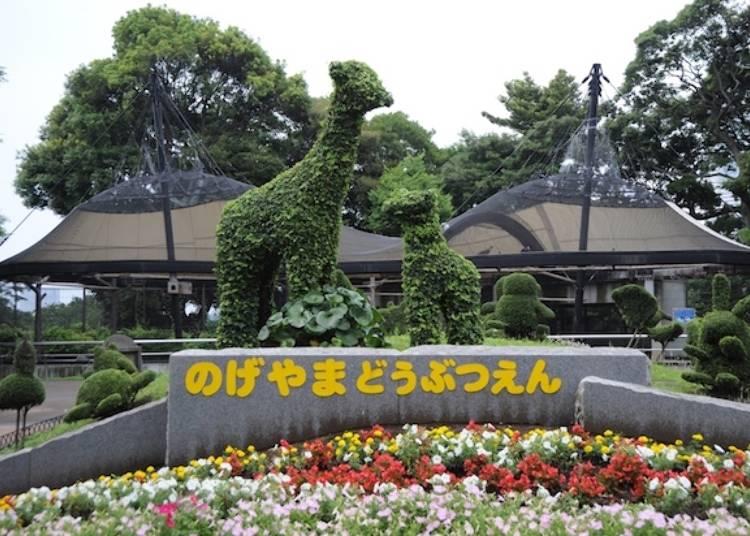 入園無料!かわいらしい動物に癒される「野毛山動物園」