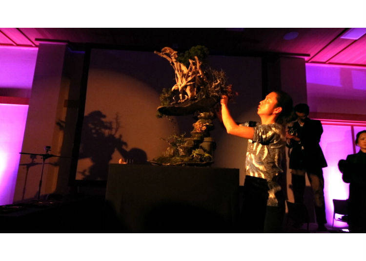 Unconventional Bonsai Art that Challenges both Japan and the World