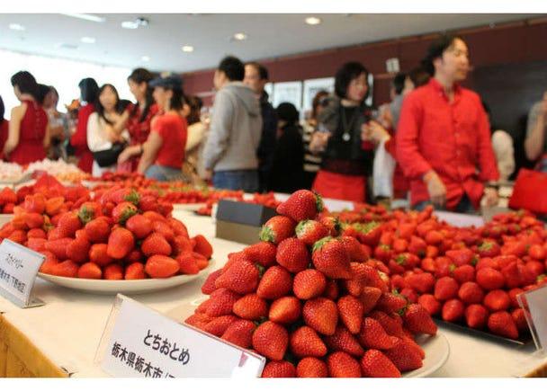草莓控也有社團?「銀座草莓倶楽部」