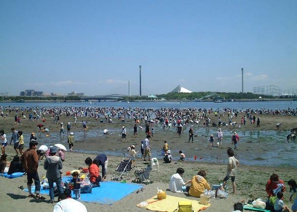 Okinawa Park, Yokohama - Find All-Natural Asari Clams!