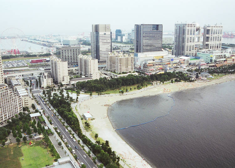 Odaiba Seaside Park - Gather Shells, Clams, and Crabs after Shopping and Sightseeing!