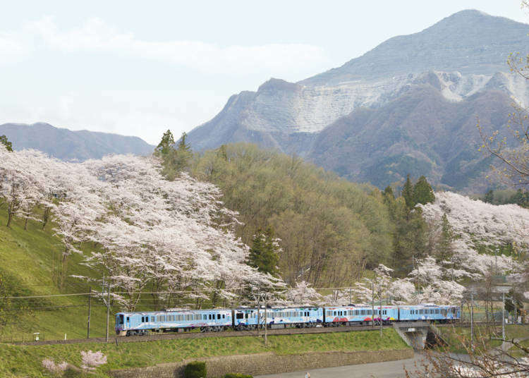 52 Seats of Happiness: Brunch on Japan's Incredible Restaurant Train! (A Must-Do in Spring!)