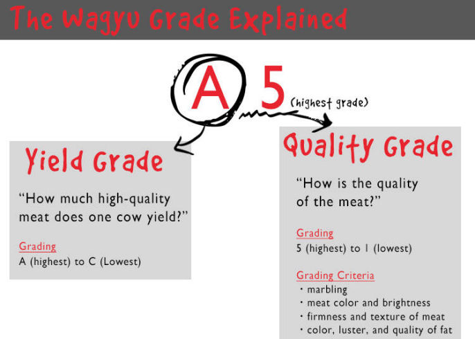 Japanese meat grading explained. A5 is the highest grade wagyu meat