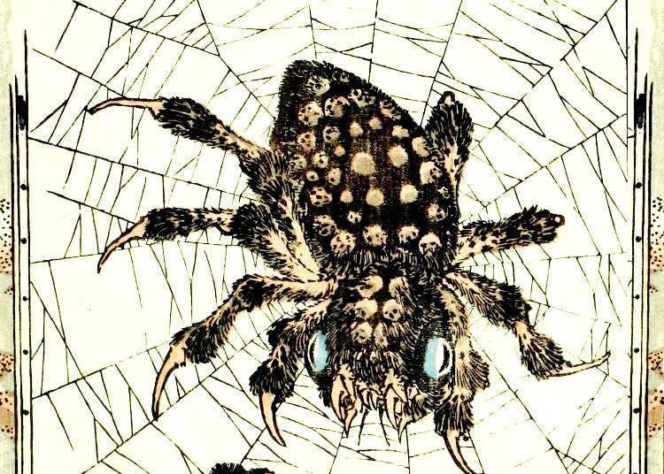 아침 친구는 밤의 적, 그것은 거미