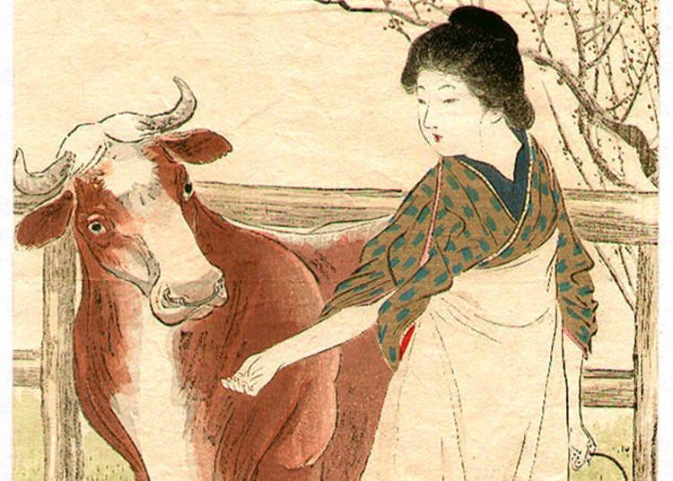 日本都市傳說之肆!吃飽馬上躺平會變成牛