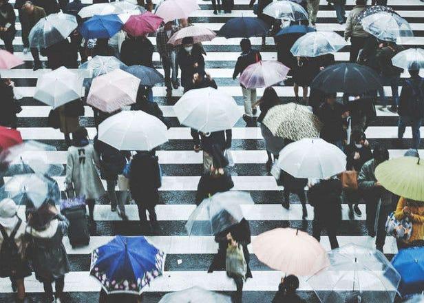 对台湾人来说也许不是难事? !日本的梅雨?台风?