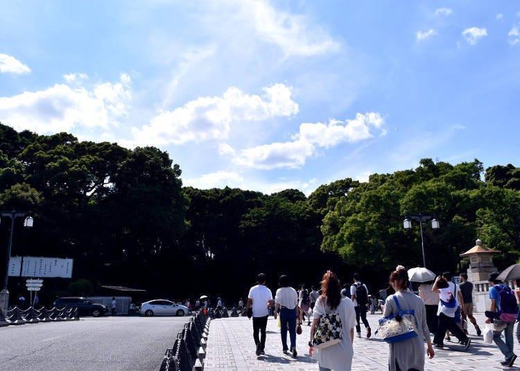 位在时尚圣地原宿的绿园-明治神宫