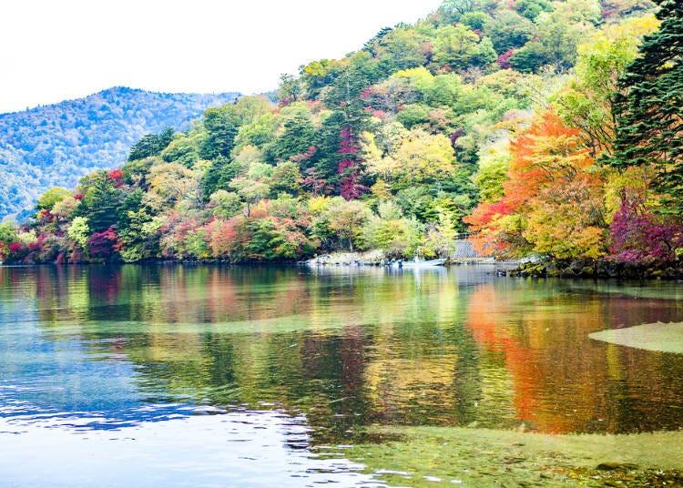 周遊券範圍景點介紹:枥木-日光東照宮、中禪寺湖、華嚴瀑布