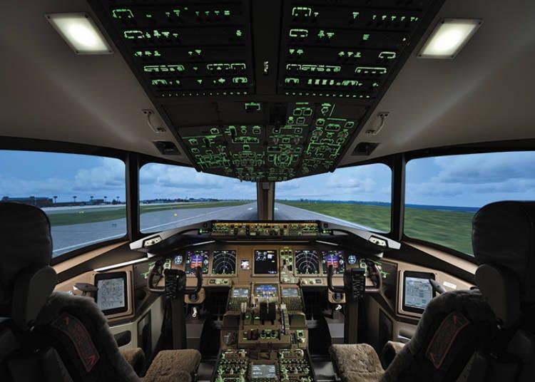 1. Sky Art Japan: Become a Real Pilot!