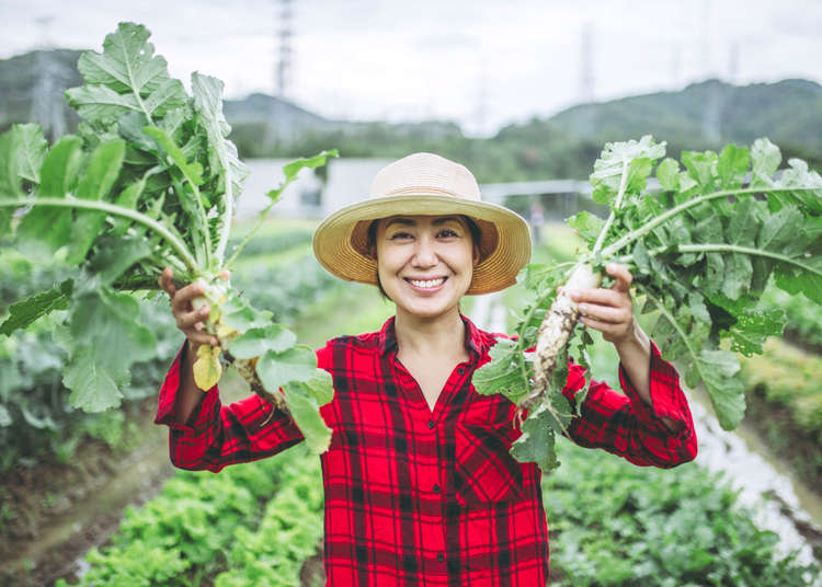 10 Popular Japanese Vegetables You'll Fall In Love With!
