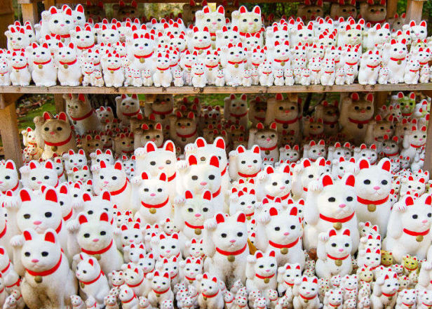 "Gotokuji Temple: Tokyo's ""Lucky Cat"" Temple - A Must-Visit for Cat Lovers!"