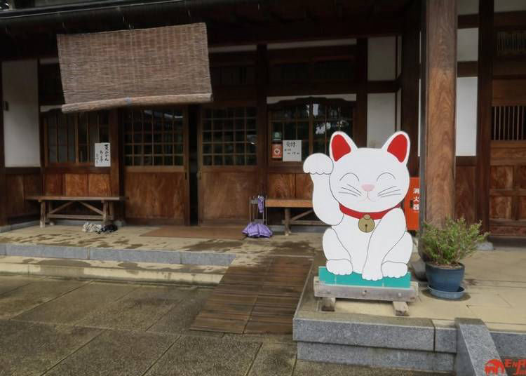 Where is Gotokuji Temple?