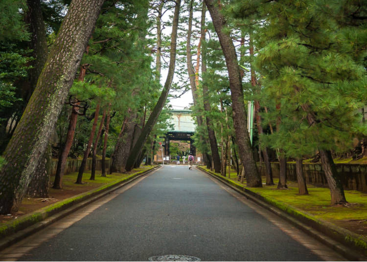 The legend behind Gotokuji Temple