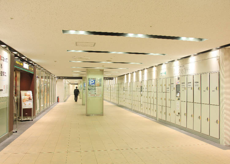 Shinjuku Station & Surroundings