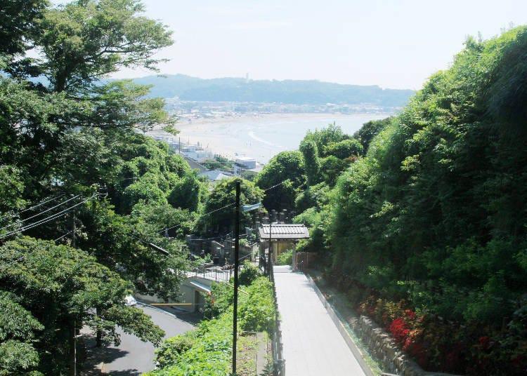 必看!爬上能看見由比濱的山坡吧,坡上的日本寺廟「成就院」