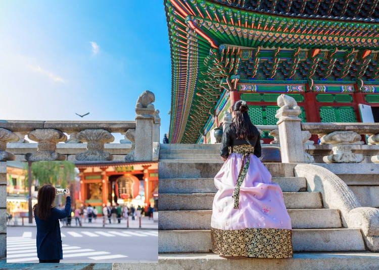5.일본인이 한국에서 보고 즐기는것은?