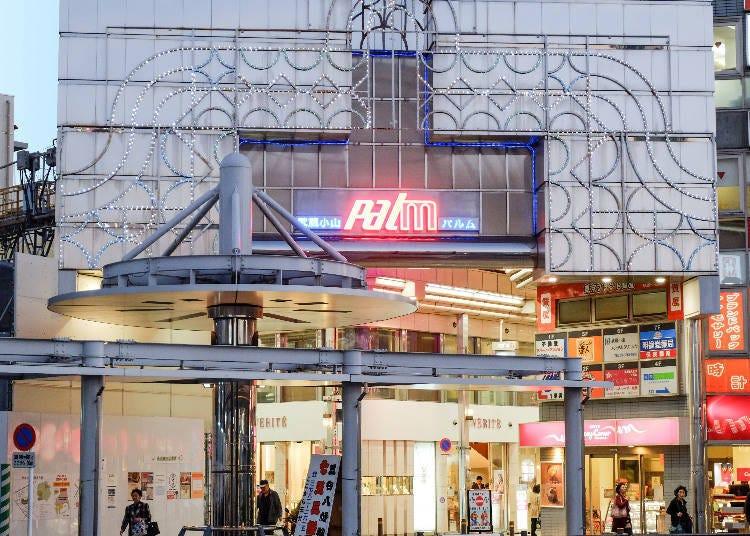 9. Musashi Koyama PALM Shopping Street