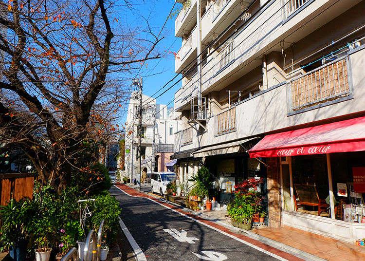 도쿄 감성여행의 중심은 나카메구로! 메구로강, 벚꽃, 고가시타...