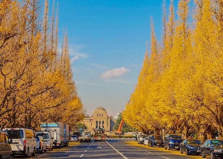 東京秋季限定的絕美風景 明治神宮外苑銀杏並木道