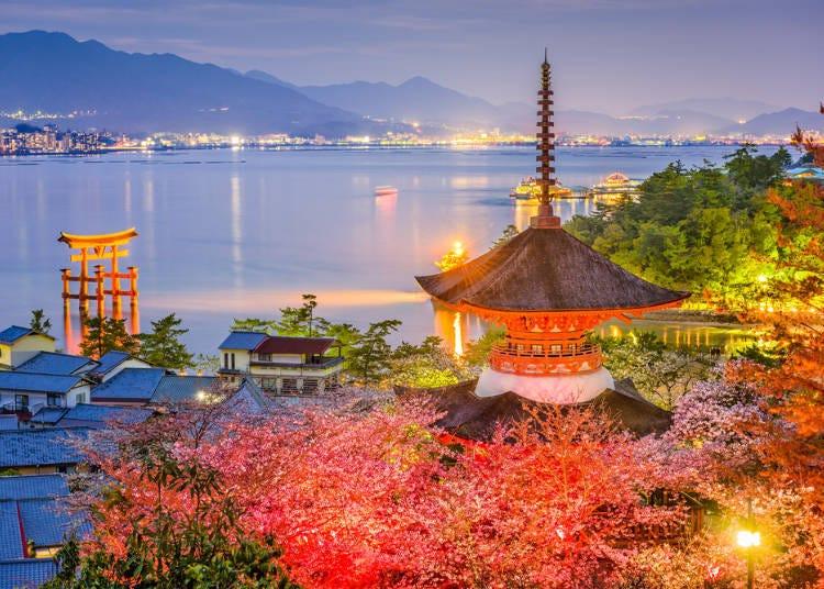 品尝日式甜点的风雅-【广岛】日式红叶馒头口味