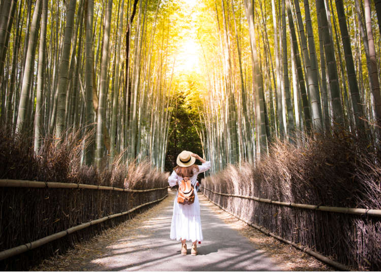 Traveling Japan Alone How To Make The Most Out Of Your Solo Trip Live Japan Travel Guide