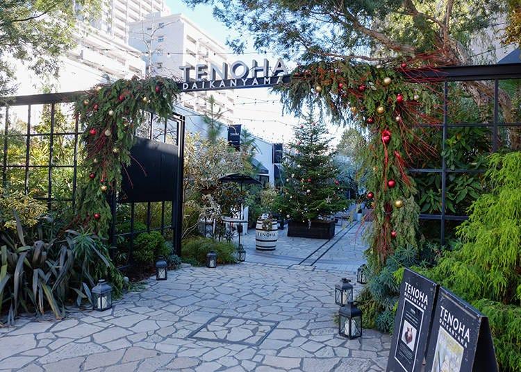 代官山必訪! 被美麗的綠意植栽圍繞的複合式庭園「TENOHA DAIKANYAMA」
