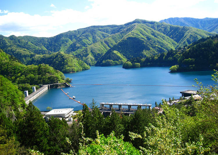 Okutama Lake: Cherry Blossom Gorgeousness in Spring, Autumn Leaf Dreams in Fall