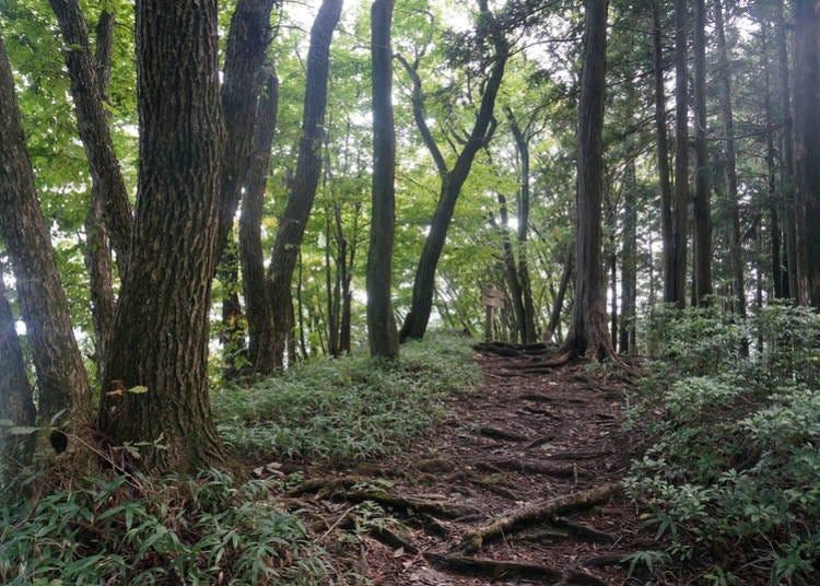 2. Koburi Pass