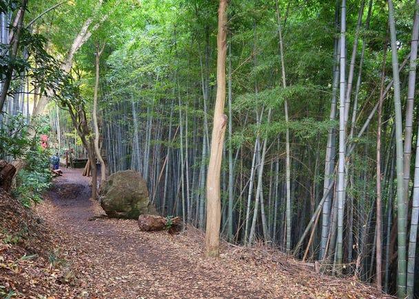 4. Ten-en Hiking Course