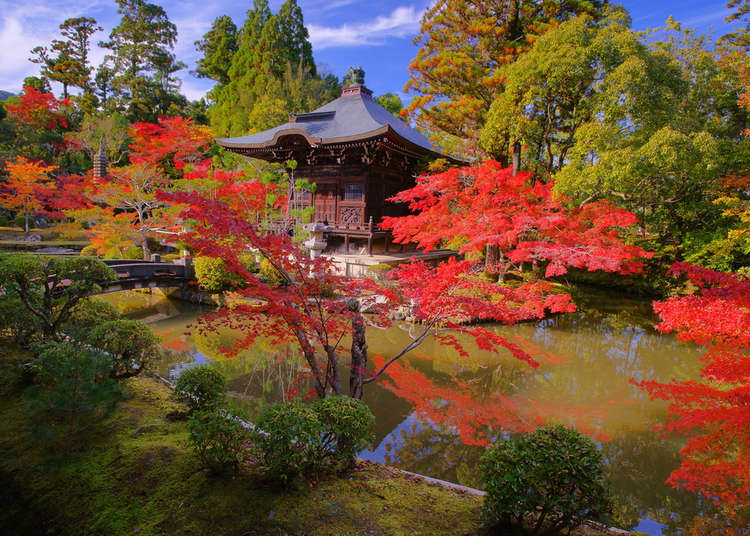 Japanese Gardens From The Exotic To The Meditative Live Japan