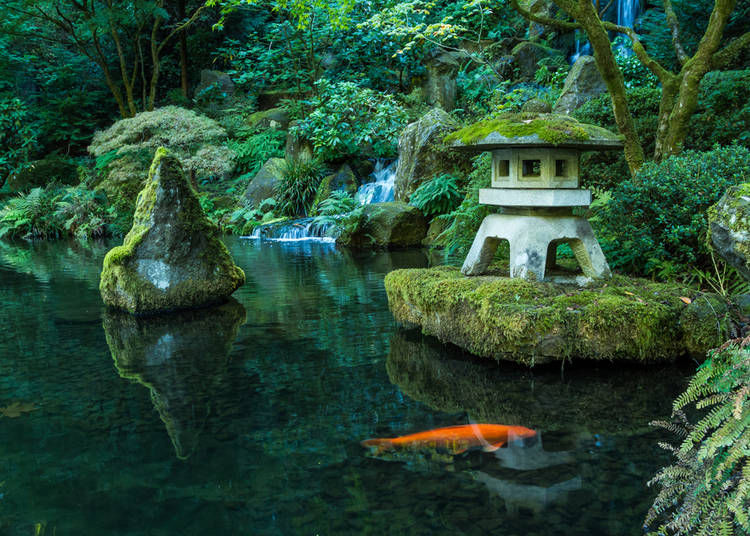 The Varying Aspects of a Traditional Japanese Garden