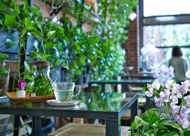 在温室里捻花惹草,疗愈人心的朵朵花潮下午茶『Aoyama Flower Market TEA HOUSE』