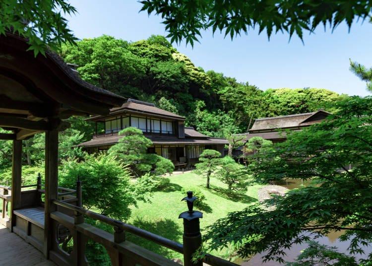 1. Visit a traditional Japanese garden: Sankeien Garden