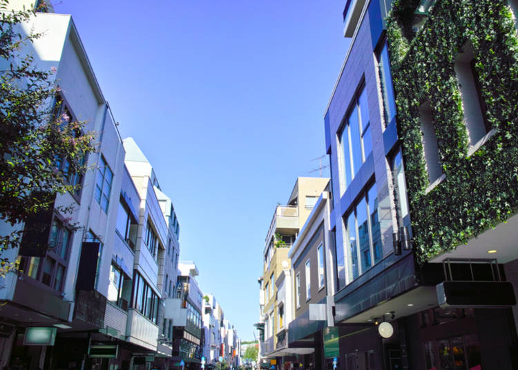 3. Go Window Shopping in Motomachi