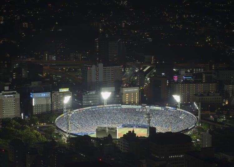 10. Catch a Yokohama DeNA Baystars Baseball Game