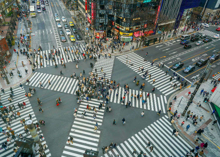 Tokyo 1-Day Itinerary: 8 Must-See Places for a Day Trip in Tokyo