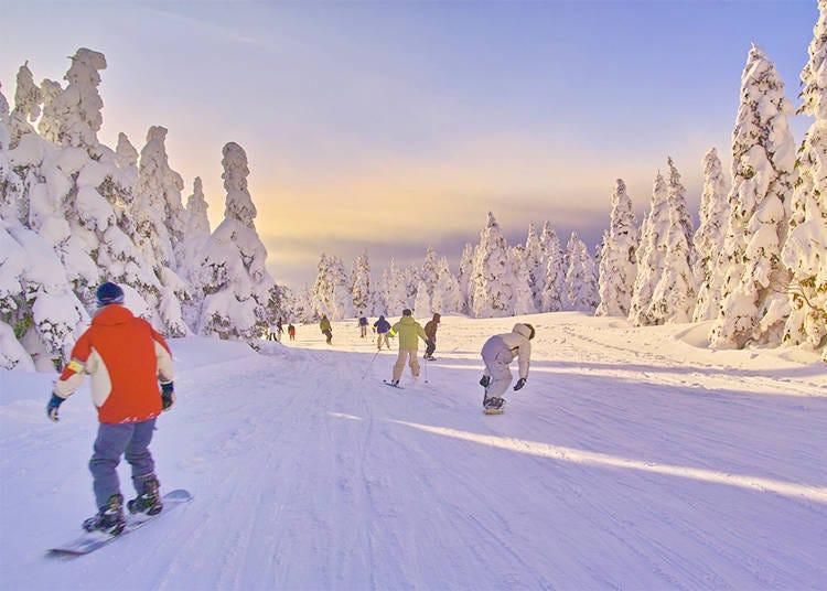 Ski & Snowboarding Lessons in Japan