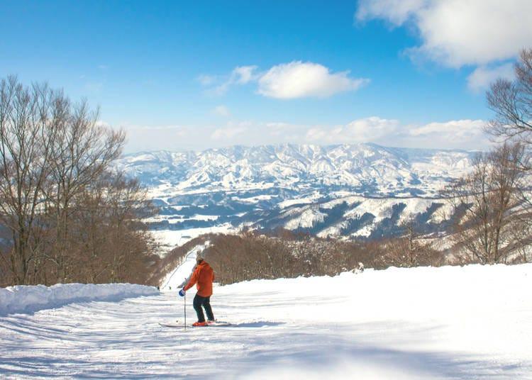9. Nozawa (Nagano Prefecture)