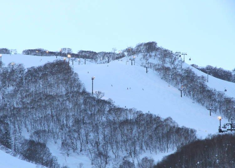 5. Niseko Village Ski Resort