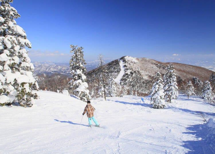 日本滑雪勝地⑧夏油高原滑雪場【岩手縣】