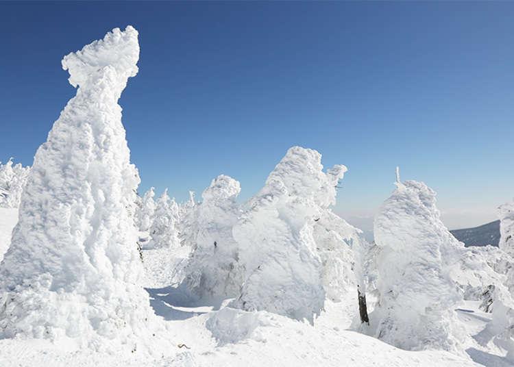 東北地區限定冬季風物詩!宮城藏王樹冰高原巡禮