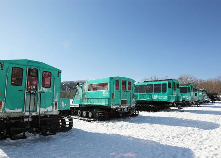 樹冰巡禮不可或缺的雪車