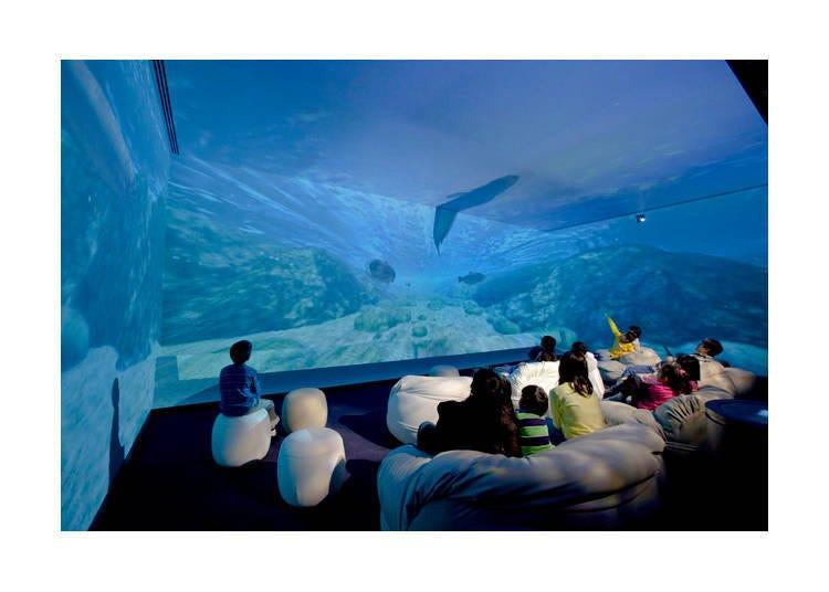 跟隨最新影像踏上奇妙旅程「AQUA・TRIP 水之旅劇場」
