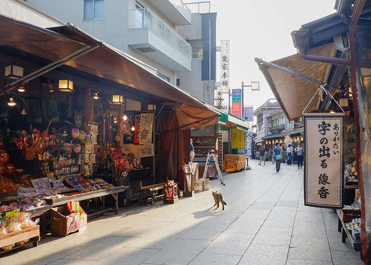 10 Reasons Why We Love 'Shitamachi', Tokyo's Traditional Downtown Areas!