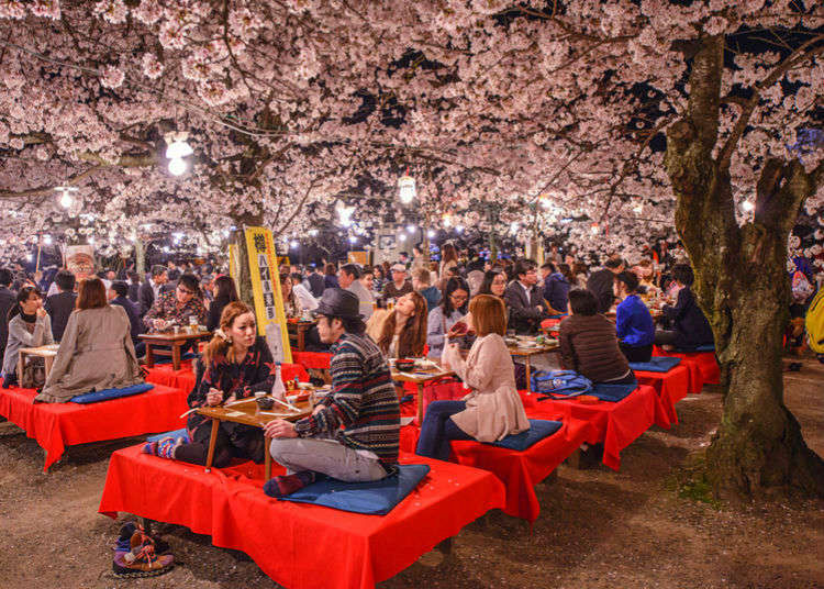 Complete Hanami Guide: How to Enjoy a Cherry Blossom Party in Japan!