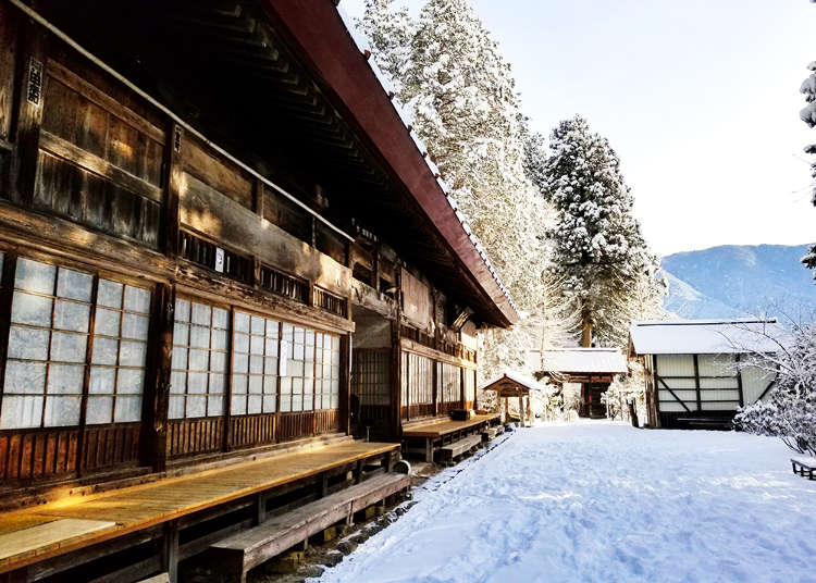 A Night in Nature: 5 Serene Temple Stays Around Tokyo!